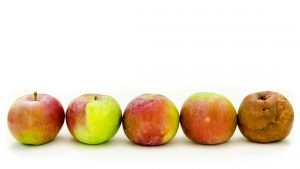 6 Steps that Prevent Bad Apple Syndrome In your Business